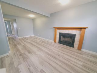 Photo 28: 23 Erin Meadows Court SE in Calgary: Erin Woods Detached for sale : MLS®# A1124454