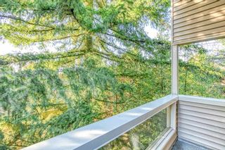 """Photo 14: 310 932 ROBINSON Street in Coquitlam: Coquitlam West Condo for sale in """"The Shaughnessy"""" : MLS®# R2438593"""