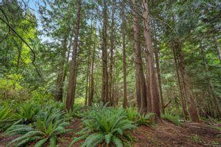 Photo 48: LOT 9 West Coast Rd in : Sk West Coast Rd Land for sale (Sooke)  : MLS®# 876669