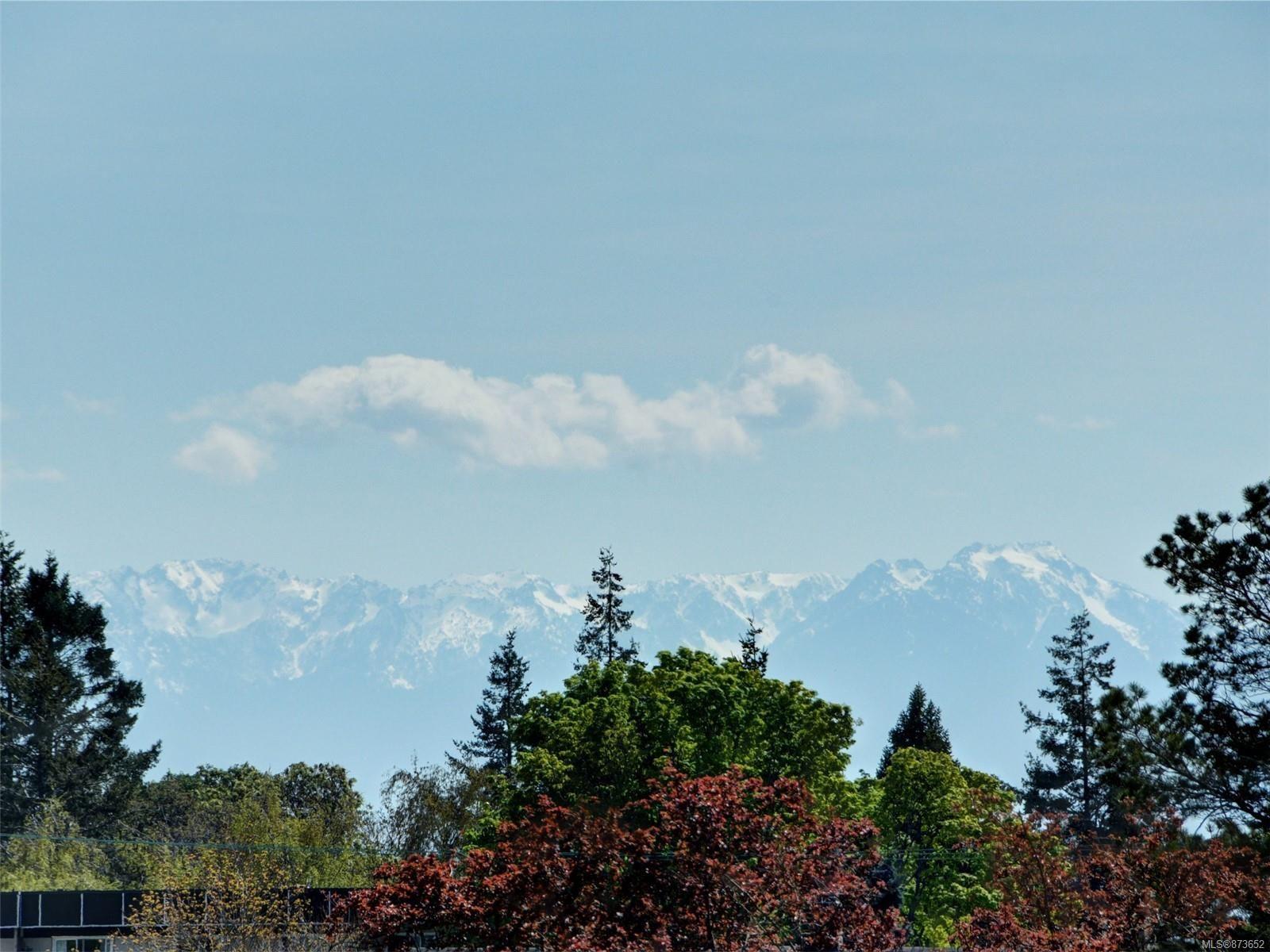 Main Photo: 306 1121 Esquimalt Rd in : Es Saxe Point Condo for sale (Esquimalt)  : MLS®# 873652