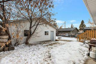 Photo 25: 255 Maitland Crescent NE in Calgary: Marlborough Park Detached for sale : MLS®# A1061446