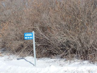 Photo 30: RM of Hillsdale-12.3 acre acreage in Hillsdale: Residential for sale (Hillsdale Rm No. 440)  : MLS®# SK842793