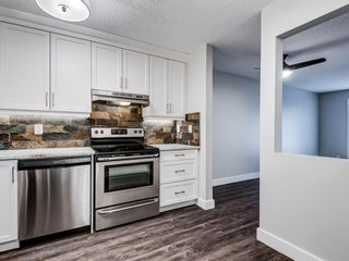 Photo 8: 109 3606 Erlton Court SW in Calgary: Parkhill Apartment for sale : MLS®# A1136859