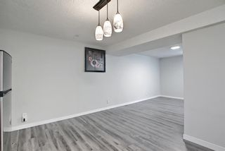 Photo 18: 3423 30A Avenue SE in Calgary: Dover Detached for sale : MLS®# A1114243