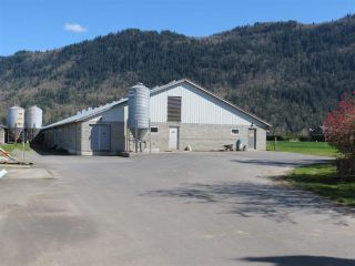 Photo 3: 1160 MARION Road in Abbotsford: Sumas Prairie Agri-Business for sale : MLS®# C8038422