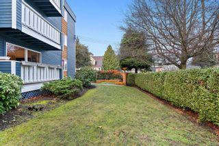 Photo 32: 1 1331 Johnson St in : Vi Fernwood Condo for sale (Victoria)  : MLS®# 862010