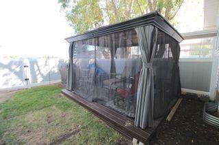 Photo 11: 5134 52 Avenue: Calmar House Half Duplex for sale : MLS®# E4261641
