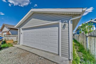 Photo 28: 262 Martinwood Place NE in Calgary: Martindale Detached for sale : MLS®# A1123392