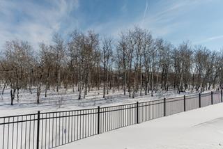 Photo 66: 27 Bridlewood Road | Bridgwater Forest Winnipeg