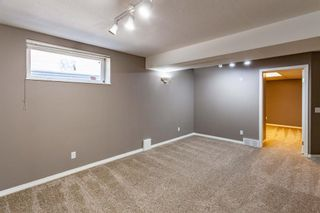 Photo 23: 53 Inverness Drive SE in Calgary: McKenzie Towne Detached for sale : MLS®# A1126962