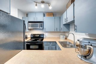 Photo 15: 2356 70 Glamis Drive SW in Calgary: Glamorgan Apartment for sale : MLS®# A1141752