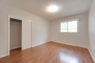 Photo 8: 12123 61 Street NW in Edmonton: House for sale : MLS®# E4166111