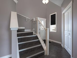Photo 5: 155 Skyview Shores Crescent NE in Calgary: Skyview Ranch Detached for sale : MLS®# A1110098