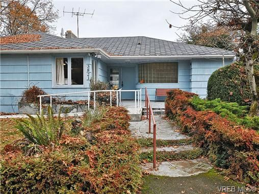 Photo 20: Photos: 3821 Synod Rd in VICTORIA: SE Cedar Hill House for sale (Saanich East)  : MLS®# 655505