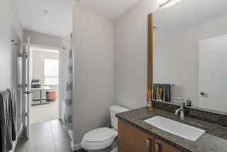 Photo 15: 205 288 HAMPTON STREET in New Westminster: Queensborough Condo for sale ()  : MLS®# R2157091