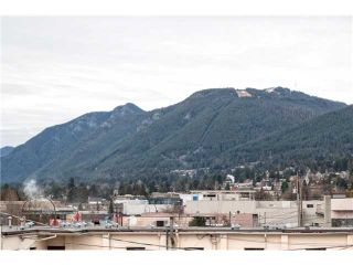 Photo 19: # 303 108 E 14TH ST in North Vancouver: Central Lonsdale Condo for sale : MLS®# V1122218