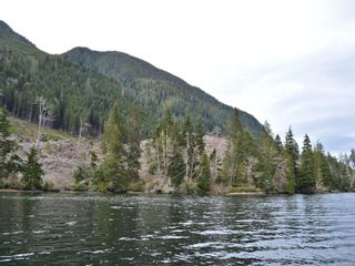 Photo 4: LT 2 Neroutsos Inlet in : NI Port Hardy Land for sale (North Island)  : MLS®# 859849