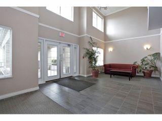 Photo 17: 322 19528 Fraser Hwy in The Fairmont: Home for sale : MLS®# F1409411