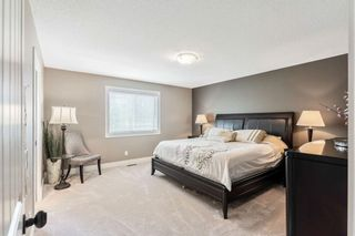 Photo 18: 815 Coopers Square SW: Airdrie Detached for sale : MLS®# A1109868