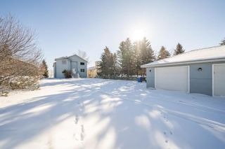 Photo 47: 352 West Chestermere Drive: Chestermere Detached for sale : MLS®# A1038857