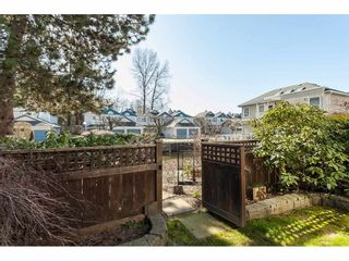 """Photo 43: 146 14154 103 Avenue in Surrey: Whalley Townhouse for sale in """"Tiffany Springs"""" (North Surrey)  : MLS®# R2447003"""