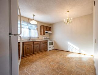 Photo 15: 15 Maddin Crescent in Winnipeg: Maples Residential for sale (4H)  : MLS®# 202120333