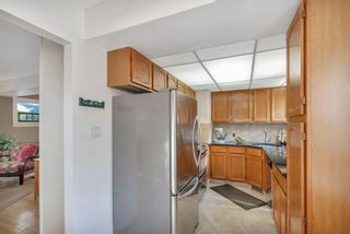 Photo 12: 1141 REGAL Crescent NE in Calgary: Renfrew Detached for sale : MLS®# A1027366
