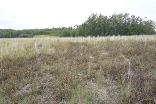 Photo 10: 17 53214 RR13: Rural Parkland County Rural Land/Vacant Lot for sale : MLS®# E4266457