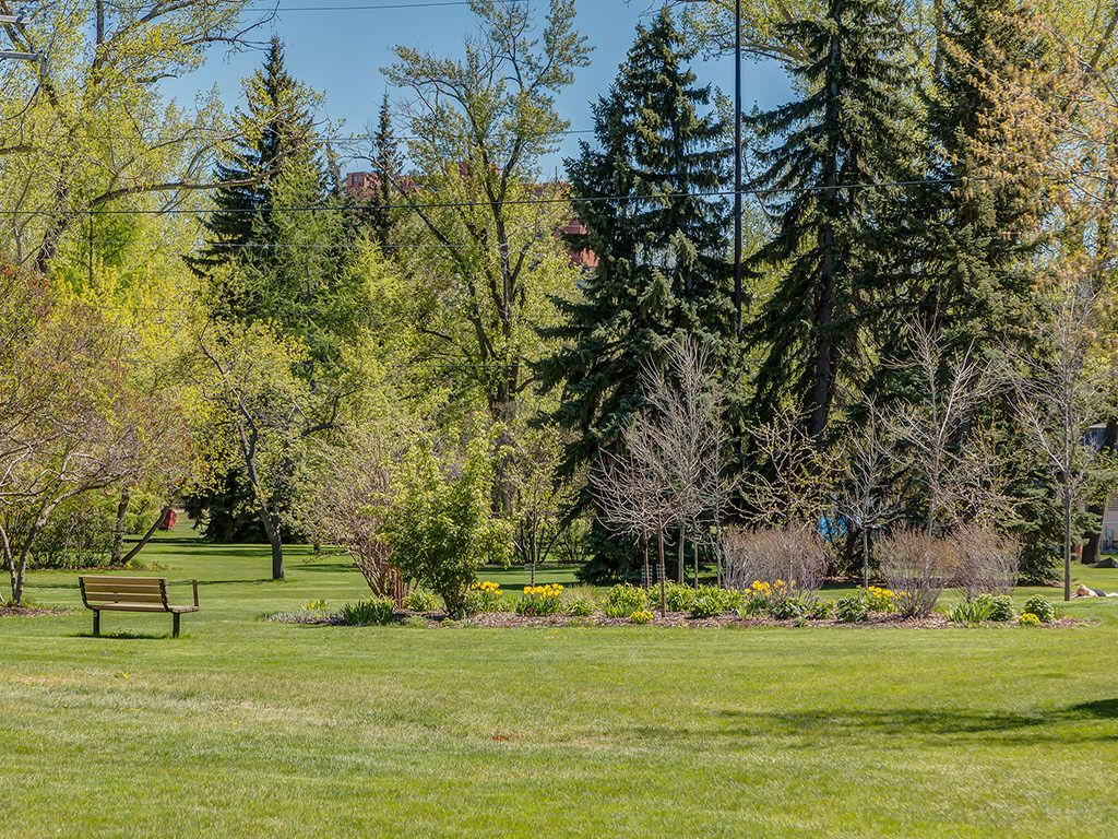 Photo 43: Photos: 306 4108 Stanley Road SW in Calgary: Parkhill_Stanley Prk Condo for sale : MLS®# c4012466
