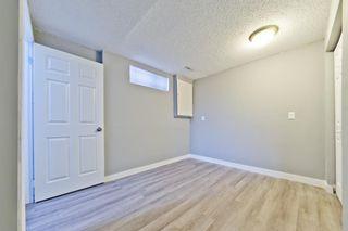 Photo 19: 1244 Falconridge Drive NE in Calgary: Falconridge Detached for sale : MLS®# A1067317
