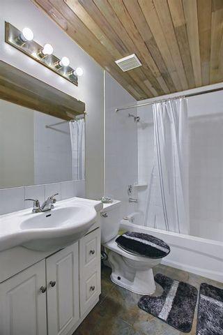 Photo 40: 120 Costa Mesa Close NE in Calgary: Monterey Park Detached for sale : MLS®# A1137993