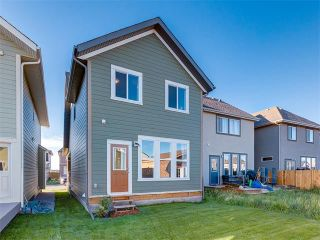 Photo 42: 321 MARQUIS Heights SE in Calgary: Mahogany House for sale : MLS®# C4074094