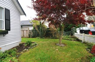 Photo 12: 20384 KENT Street in Maple Ridge: Southwest Maple Ridge House for sale : MLS®# R2221127