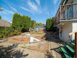 Photo 31: 238 Beechwood Ave in : Vi Fairfield East House for sale (Victoria)  : MLS®# 854081