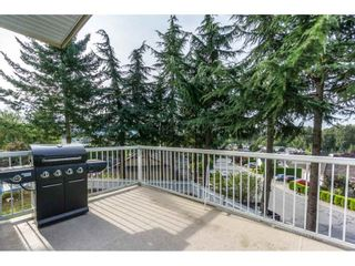 Photo 20: 31030 HERON Avenue in Abbotsford: Abbotsford West House for sale : MLS®# R2207673