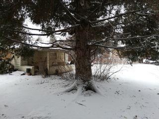 Photo 5: 10446 142 Street NW: Edmonton House for sale