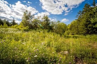 Photo 1: Lot A1 Aylesford Road in Lake Paul: 404-Kings County Vacant Land for sale (Annapolis Valley)  : MLS®# 202115389