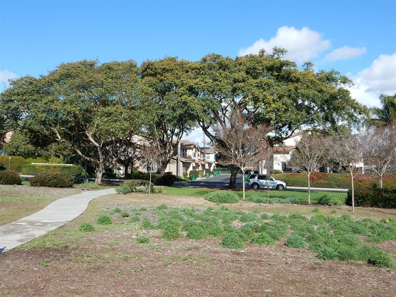 Photo 17: Photos: AVIARA Townhouse for rent : 3 bedrooms : 1662 Harrier Ct in Carlsbad