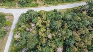 Photo 4: 356 Mill Rd in : Isl Thetis Island Land for sale (Islands)  : MLS®# 852263