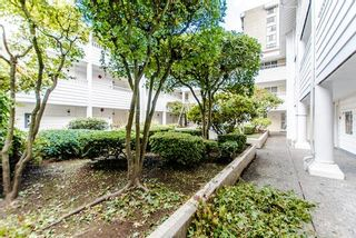 """Photo 19: 101 707 EIGHTH Street in New Westminster: Uptown NW Condo for sale in """"THE DIPLOMAT"""" : MLS®# R2208182"""