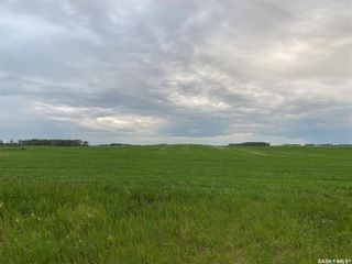 Photo 4: Kostenly Land in Emerald: Farm for sale (Emerald Rm No. 277)  : MLS®# SK861004
