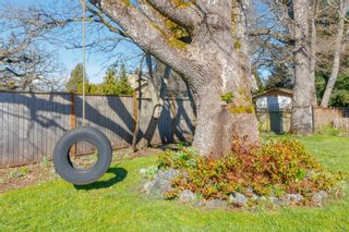 Photo 37: 3970 Bow Rd in : SE Mt Doug House for sale (Saanich East)  : MLS®# 869987