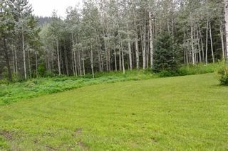 """Photo 11: 18865 GRANTHAM Road in Smithers: Smithers - Rural House for sale in """"Grantham"""" (Smithers And Area (Zone 54))  : MLS®# R2389601"""
