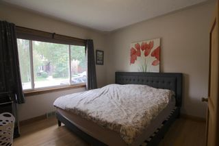 Photo 13: 520 29 Avenue NW in Calgary: Mount Pleasant Detached for sale : MLS®# A1134159