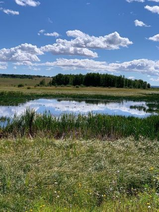 Photo 6: 10 176142 Hwy 549 W: Rural Foothills County Land for sale : MLS®# A1117268