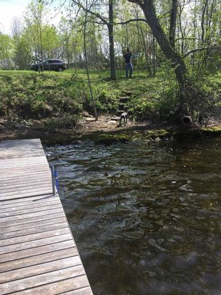 Photo 10: Pt Lot County Rd 15 in Prince Edward County: Sophiasburgh Property for sale : MLS®# X5225157