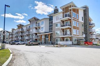 Photo 33: 1411 302 Skyview Ranch Drive NE in Calgary: Skyview Ranch Apartment for sale : MLS®# A1102866