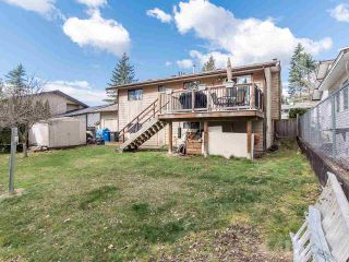 Photo 35: 35360 SELKIRK Avenue in Abbotsford: Abbotsford East House for sale : MLS®# R2551708