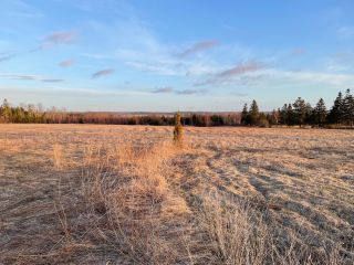 Photo 4: Lot 02-2 Burntcoat Road in Noel: 105-East Hants/Colchester West Vacant Land for sale (Halifax-Dartmouth)  : MLS®# 202108917
