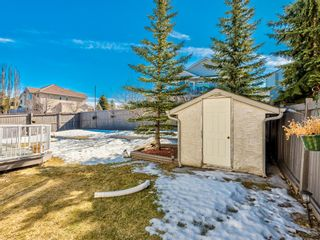 Photo 35: 177 Edgevalley Way in Calgary: Edgemont Detached for sale : MLS®# A1078975